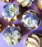 Gluten-free cupcakes for a celebration or for teatime. Made with organic Fairtrade ingredients. These are topped with a swirl of buttercream and sugared pansies. Delivery available in London. All ingredients gluten free